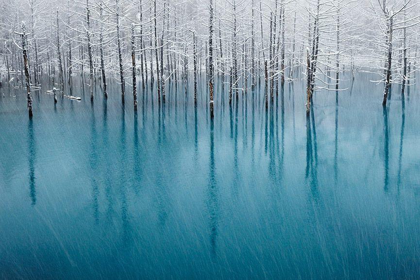La laguna azul en Biei, Hokkaido, Japón. Kent Shiraishi