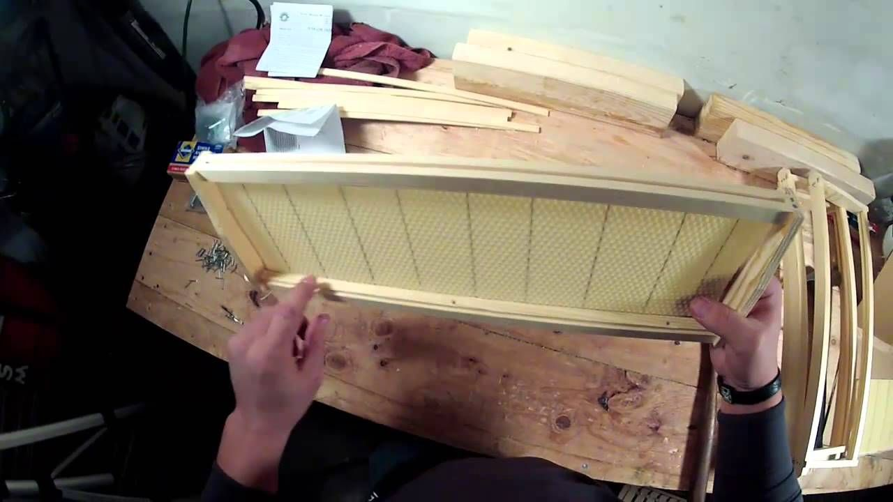 How To Install Wax Foundation Into Your Beehive Frames