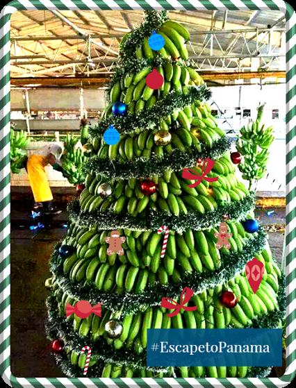 Google Caribbean Christmas Creative Christmas Christmas Time