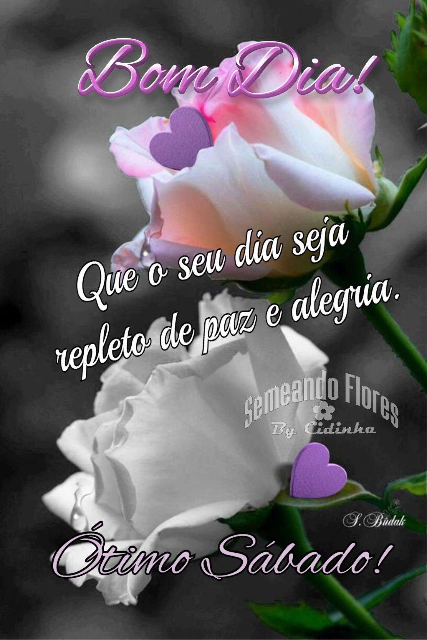 Pin De Lidia Oliveira Em Bom Dia Com Imagens Mensagens De Bom