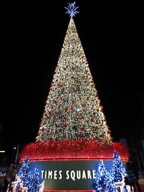 "travelandseetheworld: "" Times Square Christmas tree http ..."