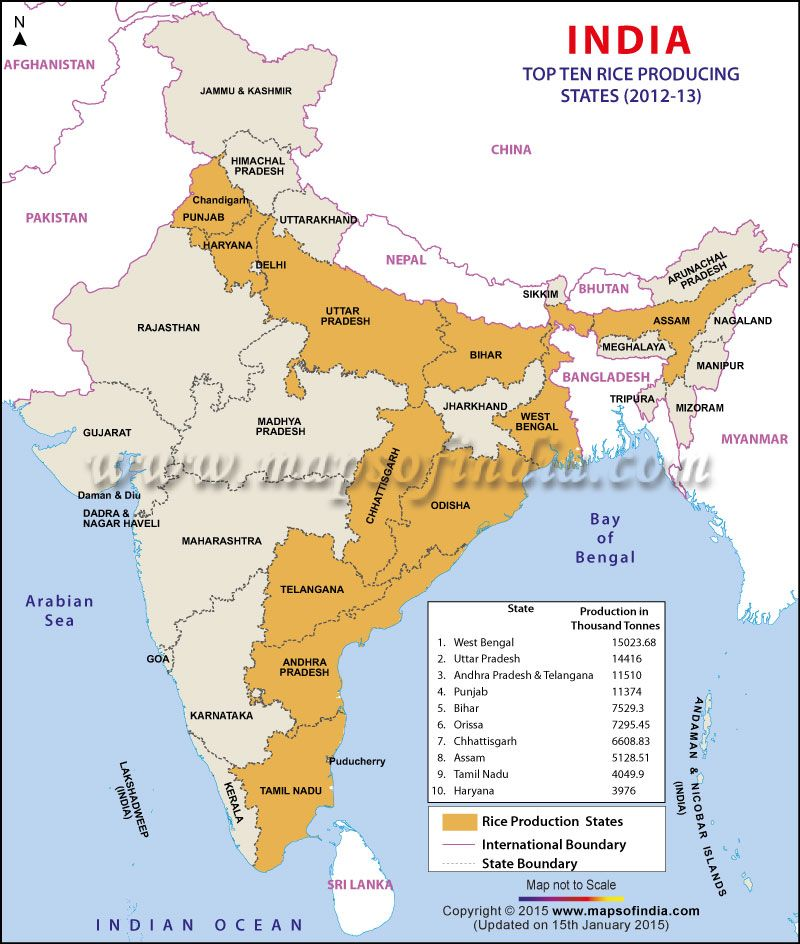 Map of Top 10 Rice Producing States of India | India Thematic Maps ...
