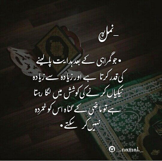 Pin by Rafique khan Pathan on s pathan Quotes from