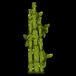 Bamboo Plant Illustration Plant Illustration Bamboo Plants Illustration