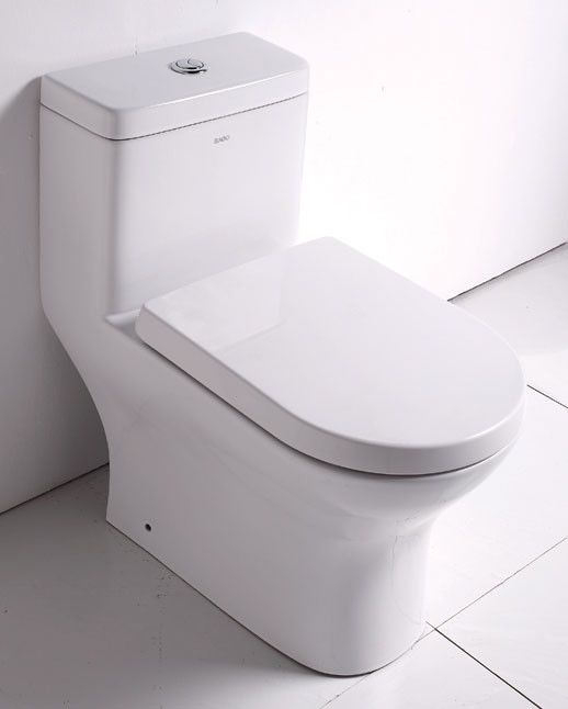 Ceramic Dual Flush Elongated One Piece Toilet Seat Included One Piece Toilets Eago Water Toilet