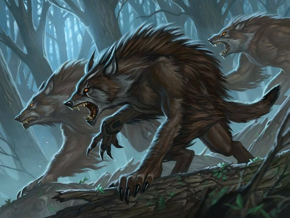 werewolf fiction criaturas in 2018 pinterest werewolf