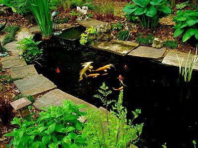 Garden pond, I want!