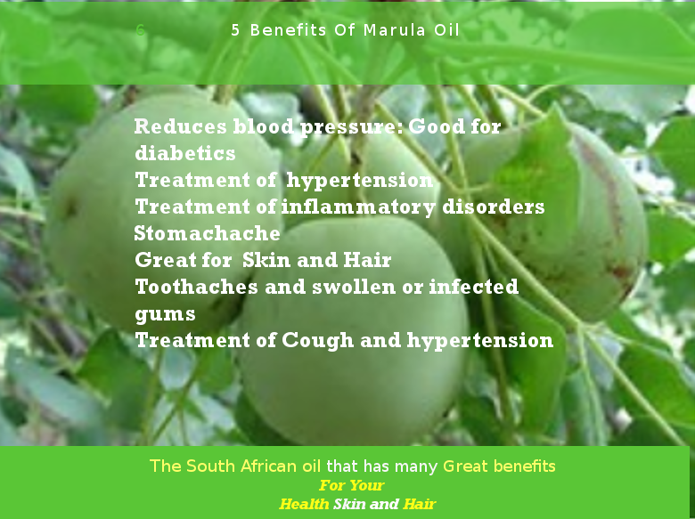 Image result for marula oil benefits