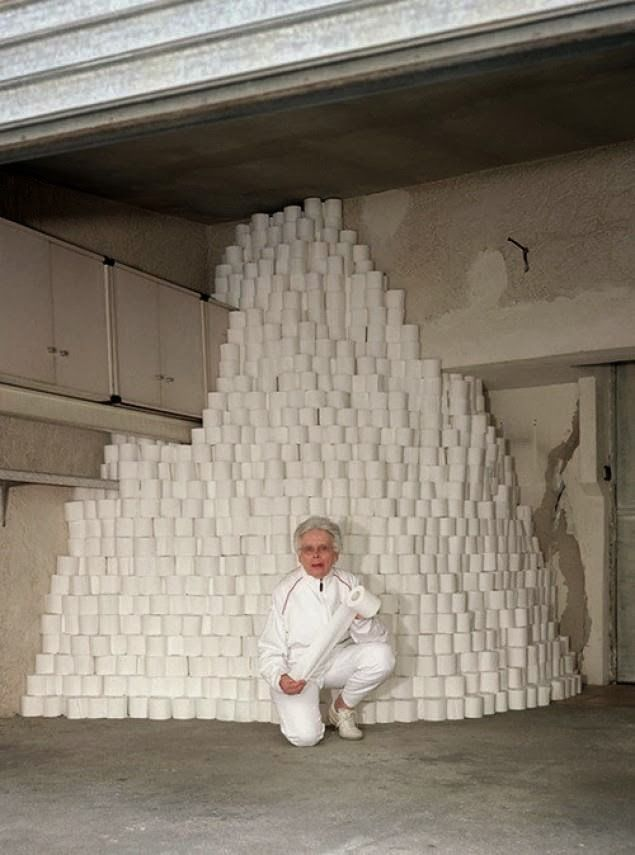 Image result for mountain of toilet roll