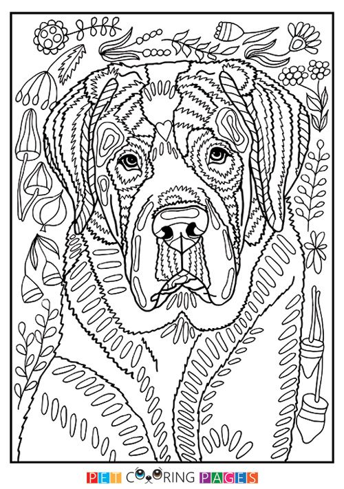 Free Printable Saint Bernard Coloring Page Available For