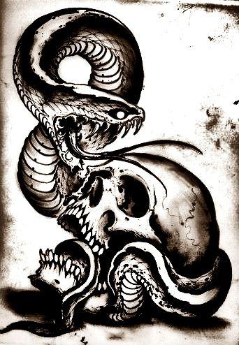 Serpiente  buzn  Pinterest  Serpientes Tatuajes y Calaveras