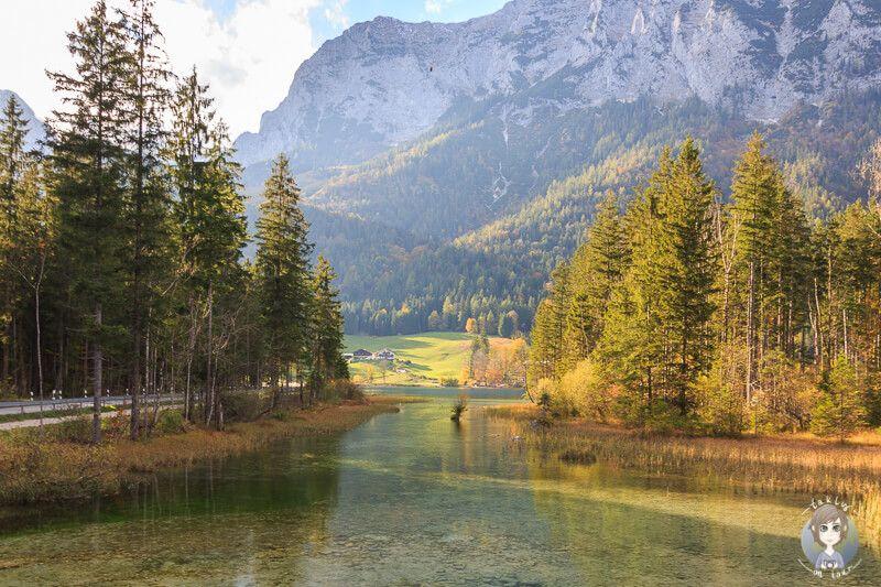 Schöne Wanderung im Zauberwald am Hintersee #naturallandmarks