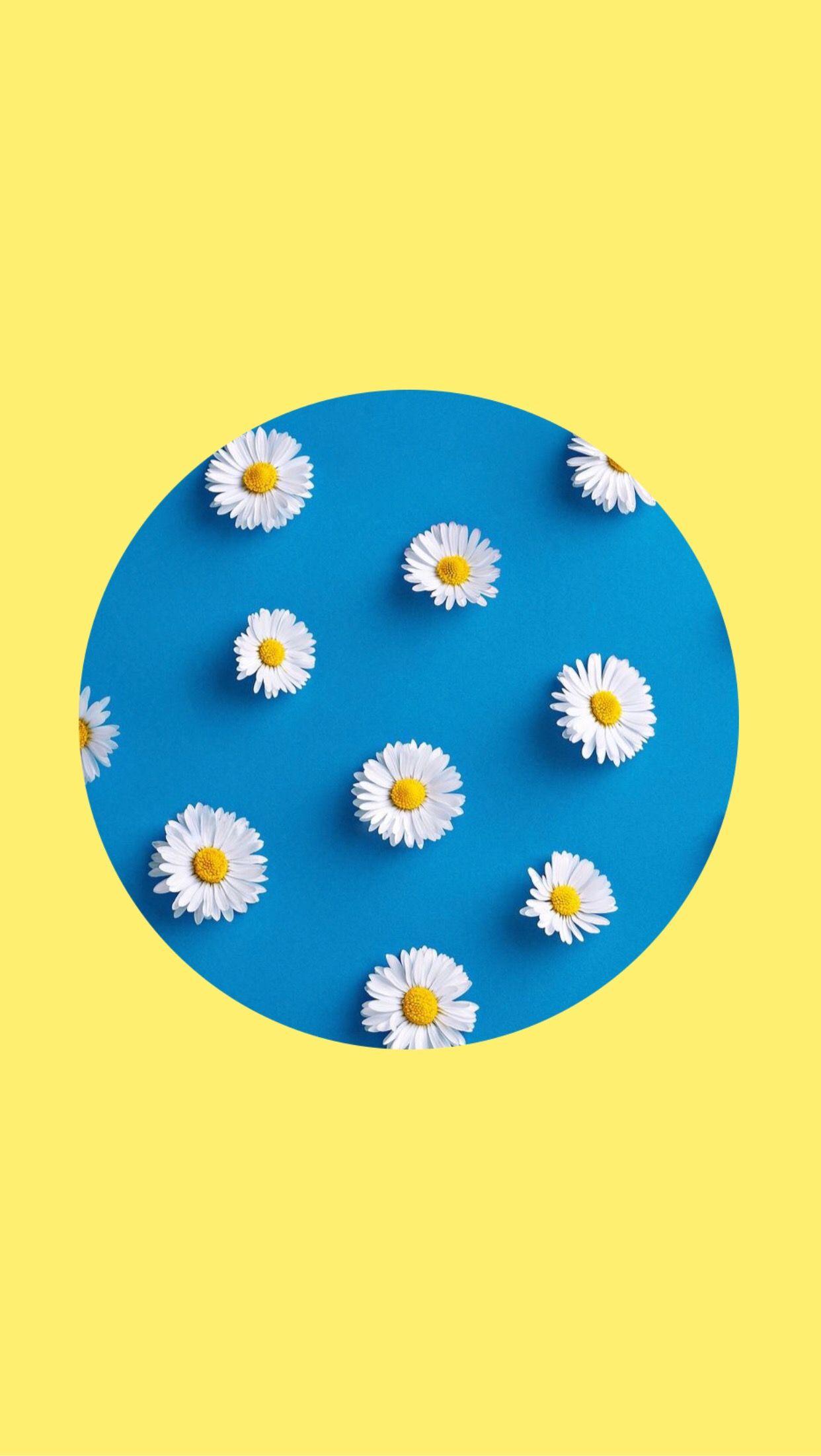 Yellow Lockscreen Wallpaper Background Blue Flowers White Circle Aesthetic Blue Flowers Wallpaper Backgrounds Yellow Aesthetic Pastel