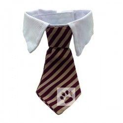 Honden stropdas met kraag 'Charles'