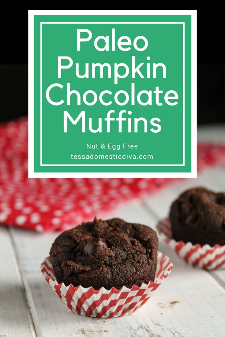 Paleo Pumpkin Chocolate Muffins Egg Nut Free Recipe
