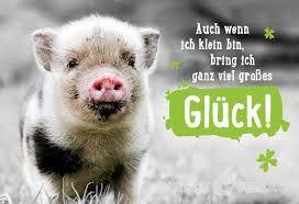 Bildergebnis Für Viel Glück Prüfung Sprüche Pinterest Happy