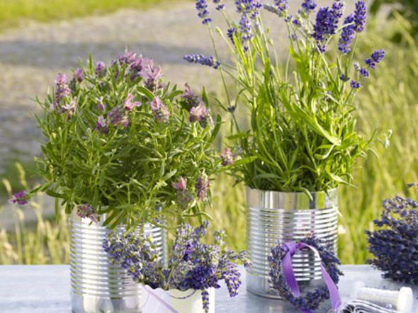 Lavendel-Deko - dufte Ideen für den Sommer