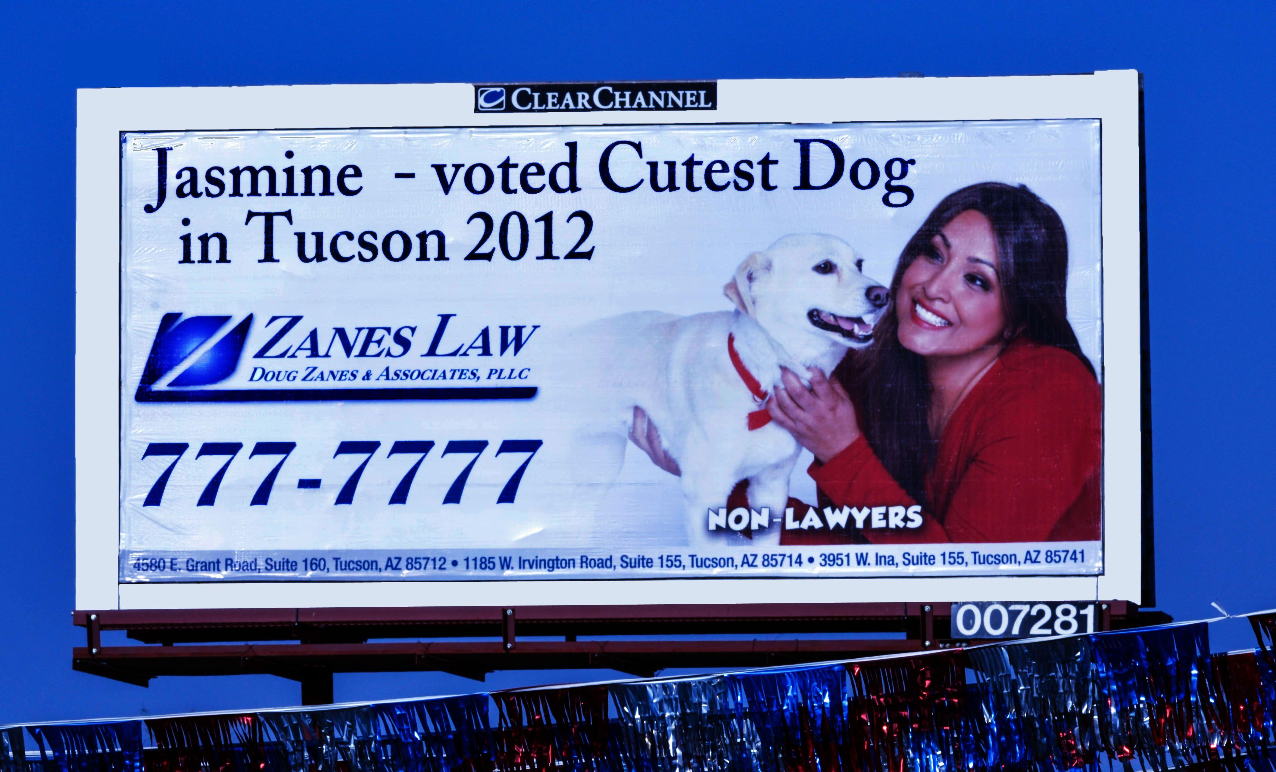Zanes Law Billboard Claudia Zanes Dog Contest Cute Dogs Zane