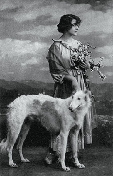 z- Borzoi & Woman w Flowers (1)