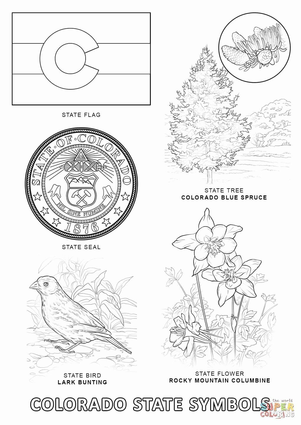 Coloring Flowers Science Project Best Of Colorado State Symbols Super Coloring Flowers Science Project Coloring Pages Personalized Coloring Book