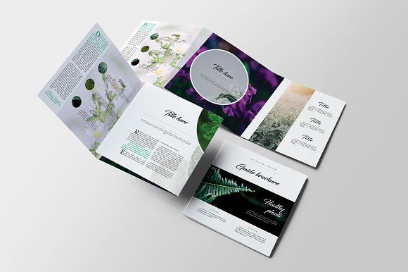 Guido Square Trifold Brochure A Brochure Templates Psd A Size - Product brochure templates free download