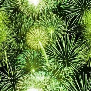 Lime Green Background - Bing Images