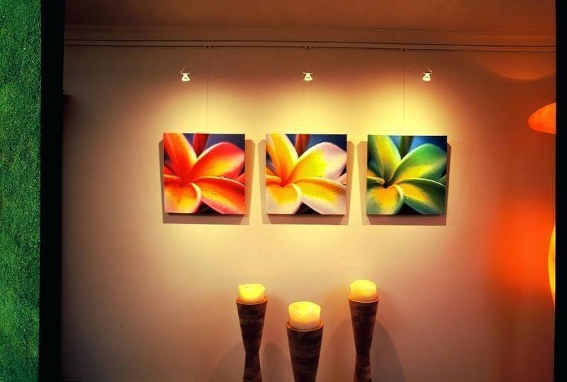 Best Track Lighting For Art Led Art Lighting Picture Hanging Gallery Lighting
