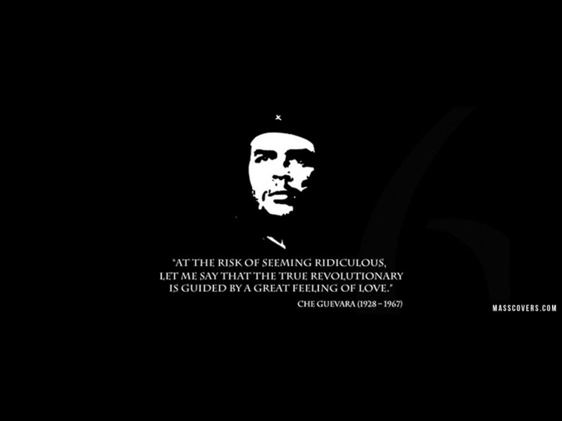 Che Guevara Critical Essays