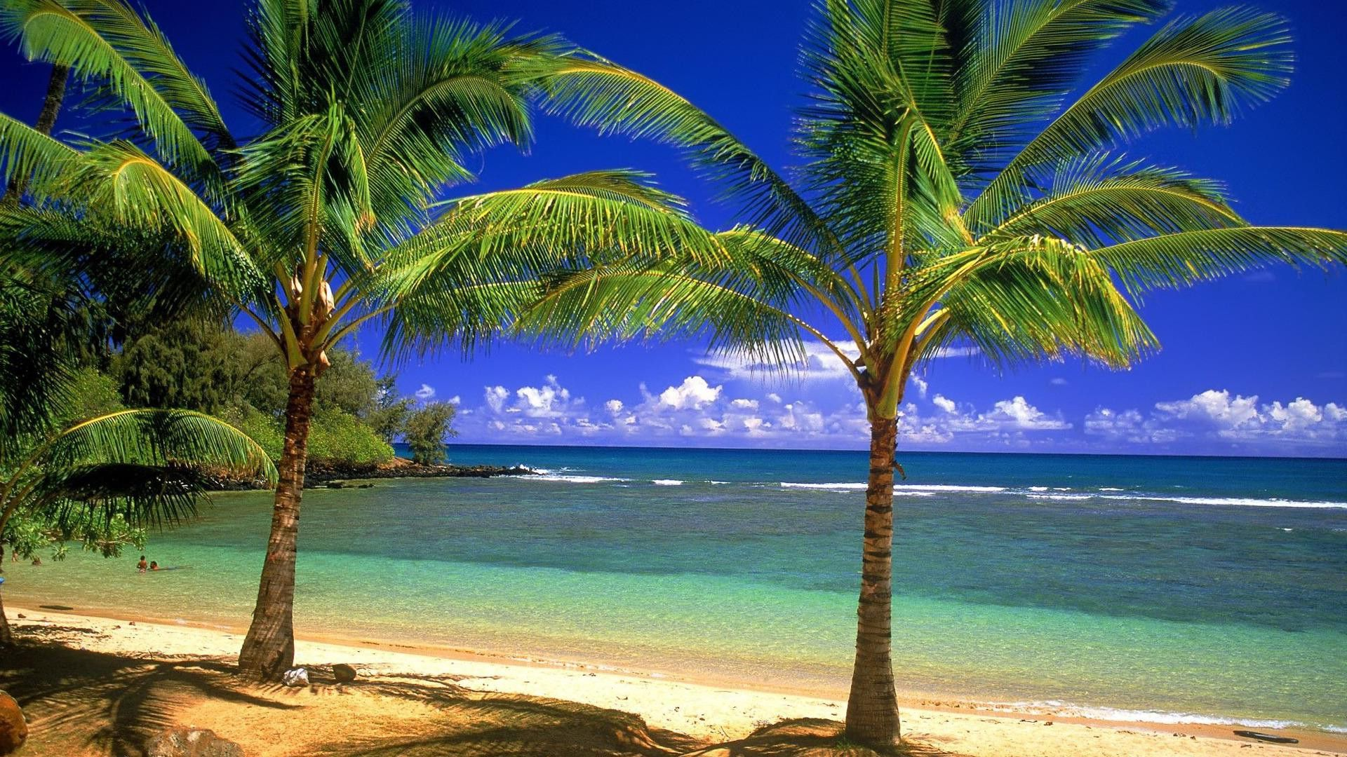 Romantic Beach Wallpapers Pictures HD Wallpaper