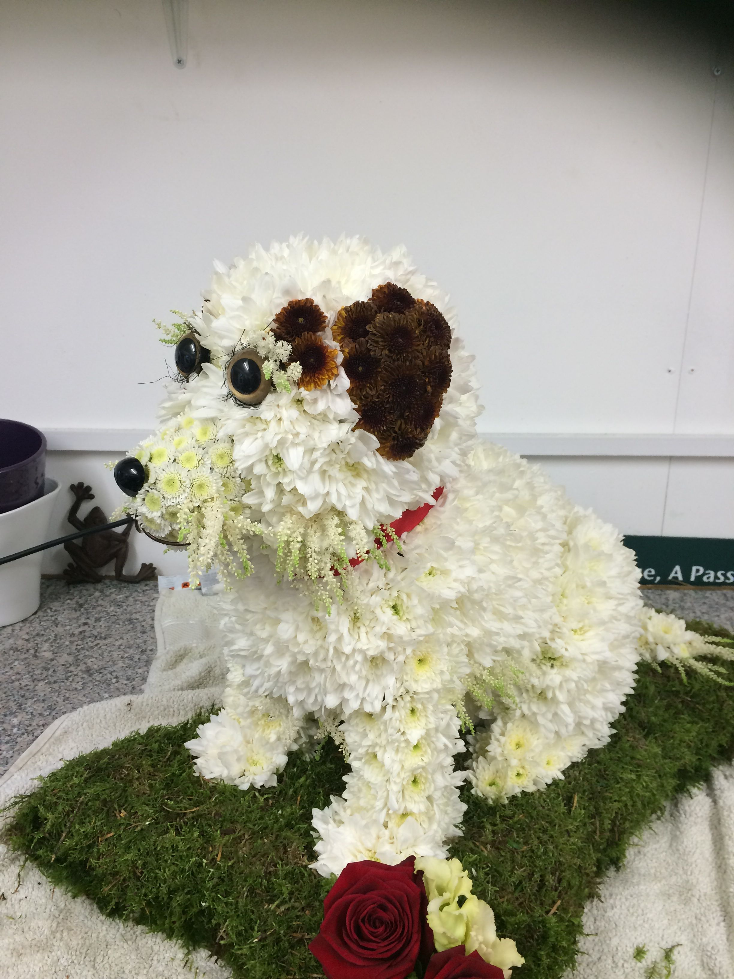 A 3d jack russell funeral tribute flowers pinterest funeral a 3d jack russell funeral tribute dhlflorist Gallery