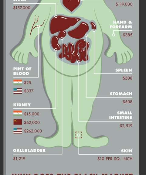 Body Part Pricing Charts Infographic Chart And Bodies - How much is the human body worth infographic