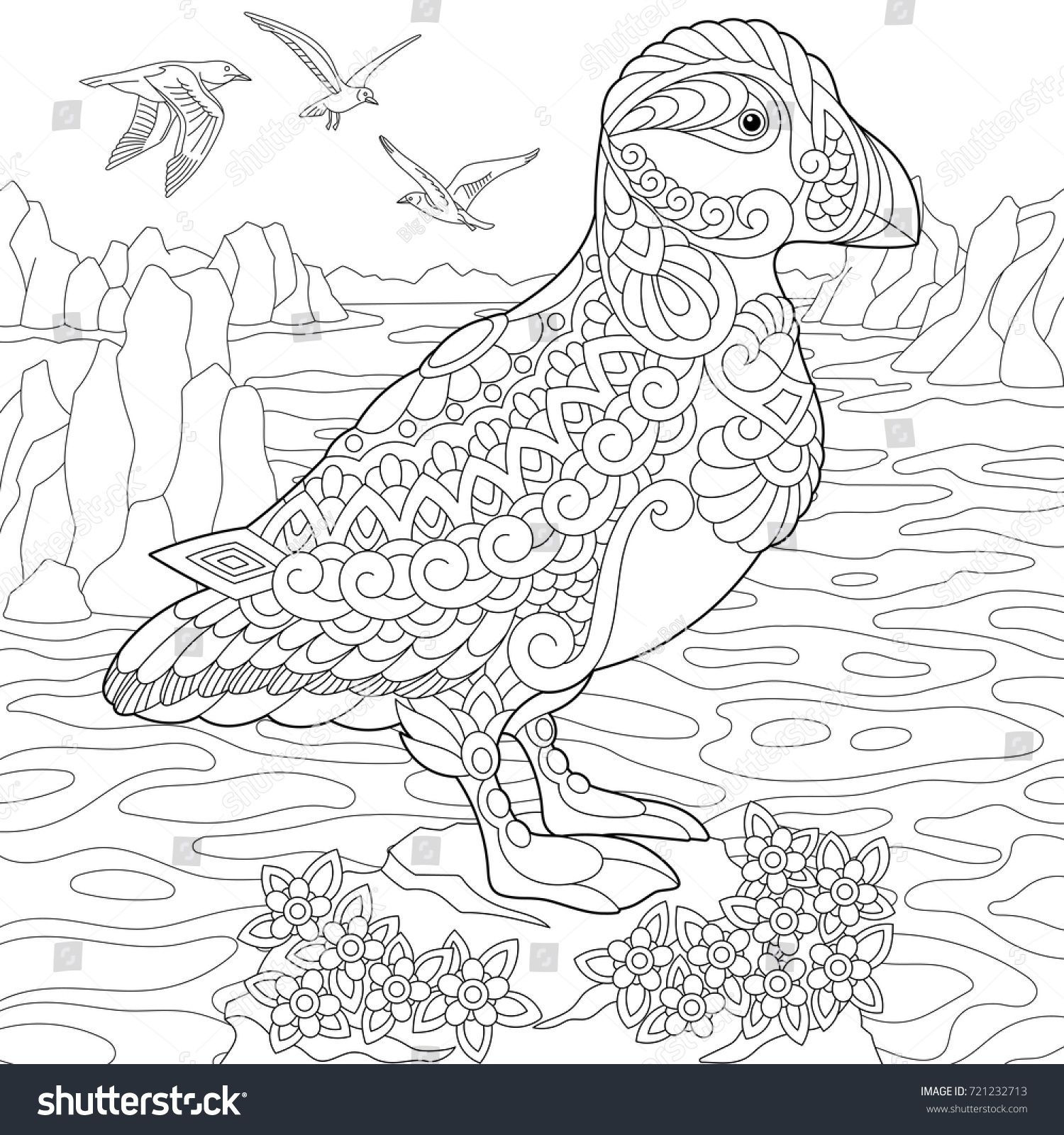 Coloring page of puffin, seabird of northern and Arctic waters ...