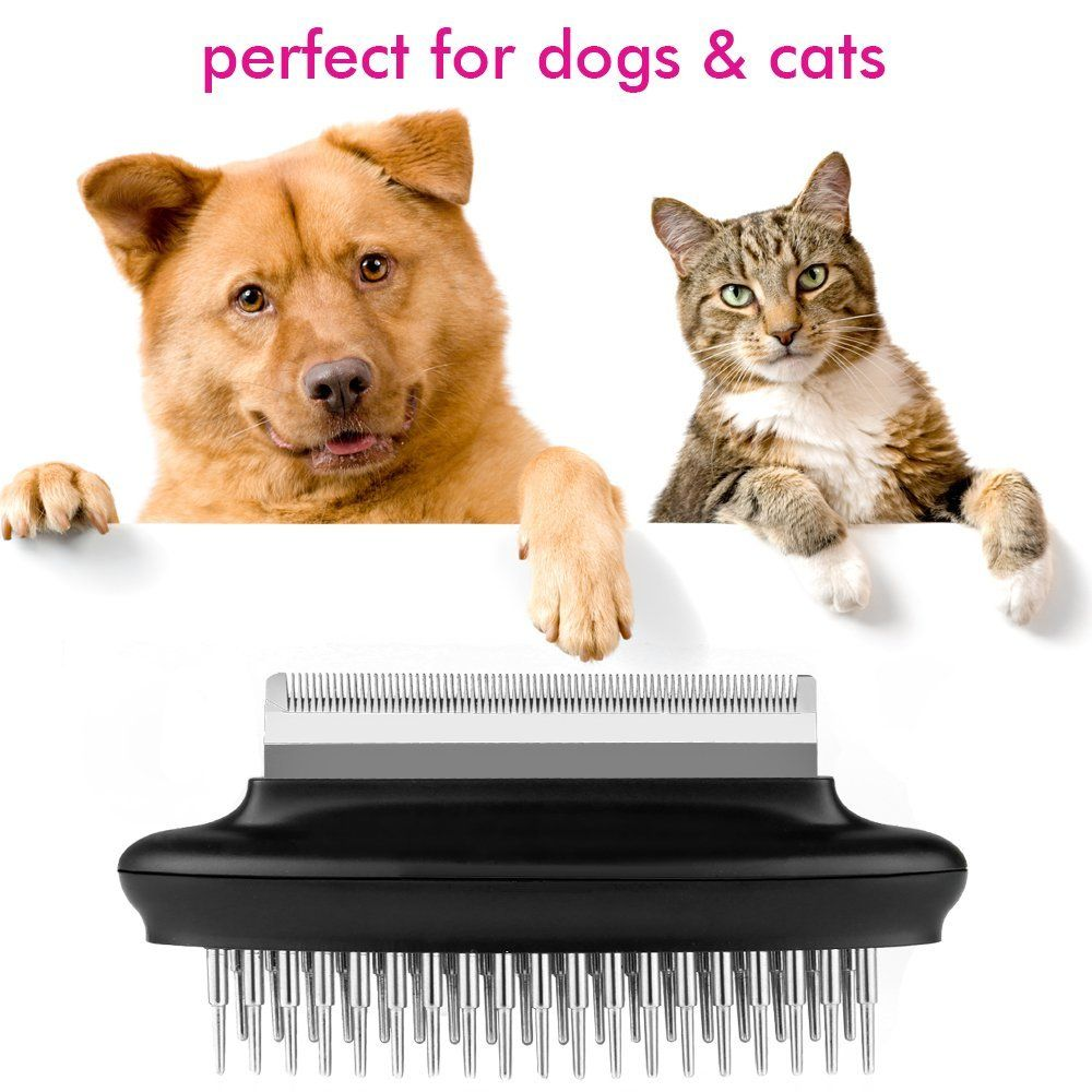 How To Remove Hair Mats From Cats 125 Best Haircuts In