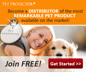 petprotector The Pet Protector Disc Produces Scalar waves and ...