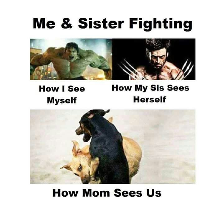 Hahahahah Lol My Mom Will Always View Us Like This Whenever We Fight For Life Siblings Funny Quotes Sister Quotes Funny Very Funny Memes