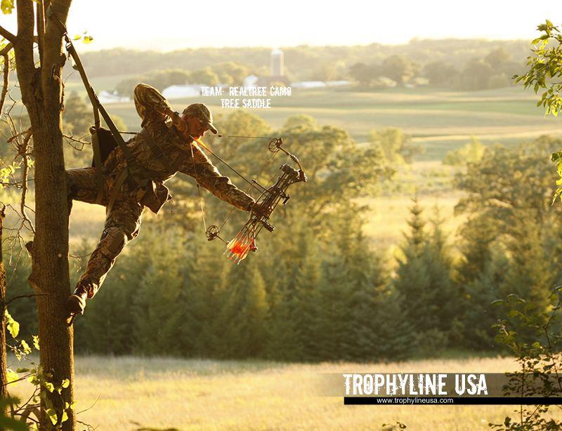 Tree Saddle   Hunting   Bow hunting, Deer hunting, Hunting