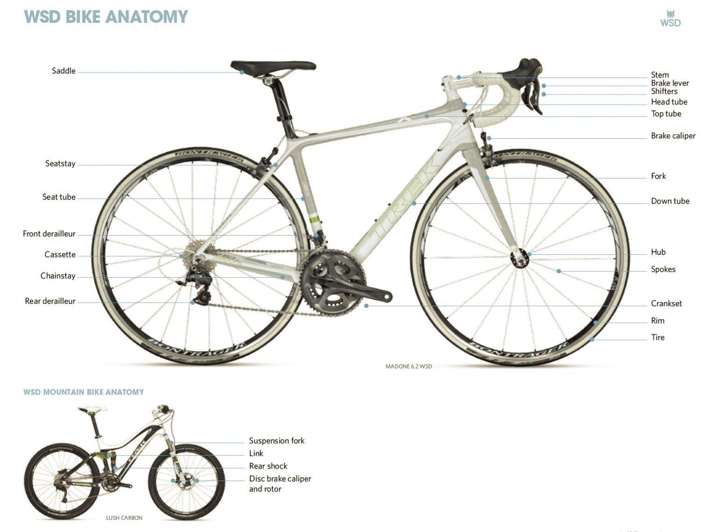 Bike Anatomy Lesson Trek Bicycle Bicycle Trek Bikes