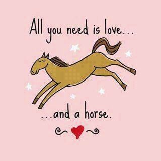 All you need... Horses