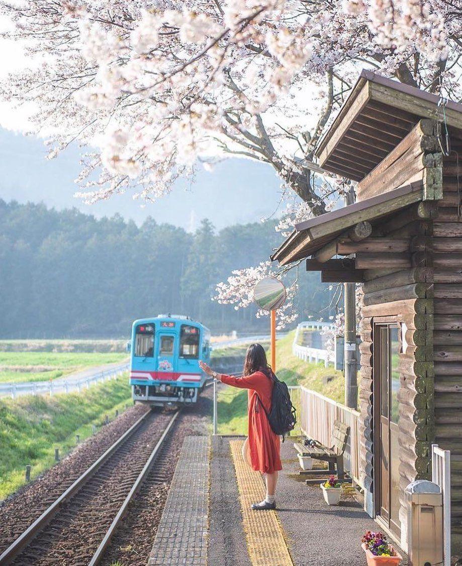 @japan_inside - Beautiful Japan 🇯🇵 Use #japan_inside for a feature  #photographyinjapan #japan_inside #tokyocameraclub #japan_of_insta #kf_gallery #art_of_japan #ig_japan #tokyo #kyoto #osaka #hokkaido #mtfuji #instagramjapan #icu_japan #美しい日本  #富士山 #電車 #新幹線 #東京カメラ部