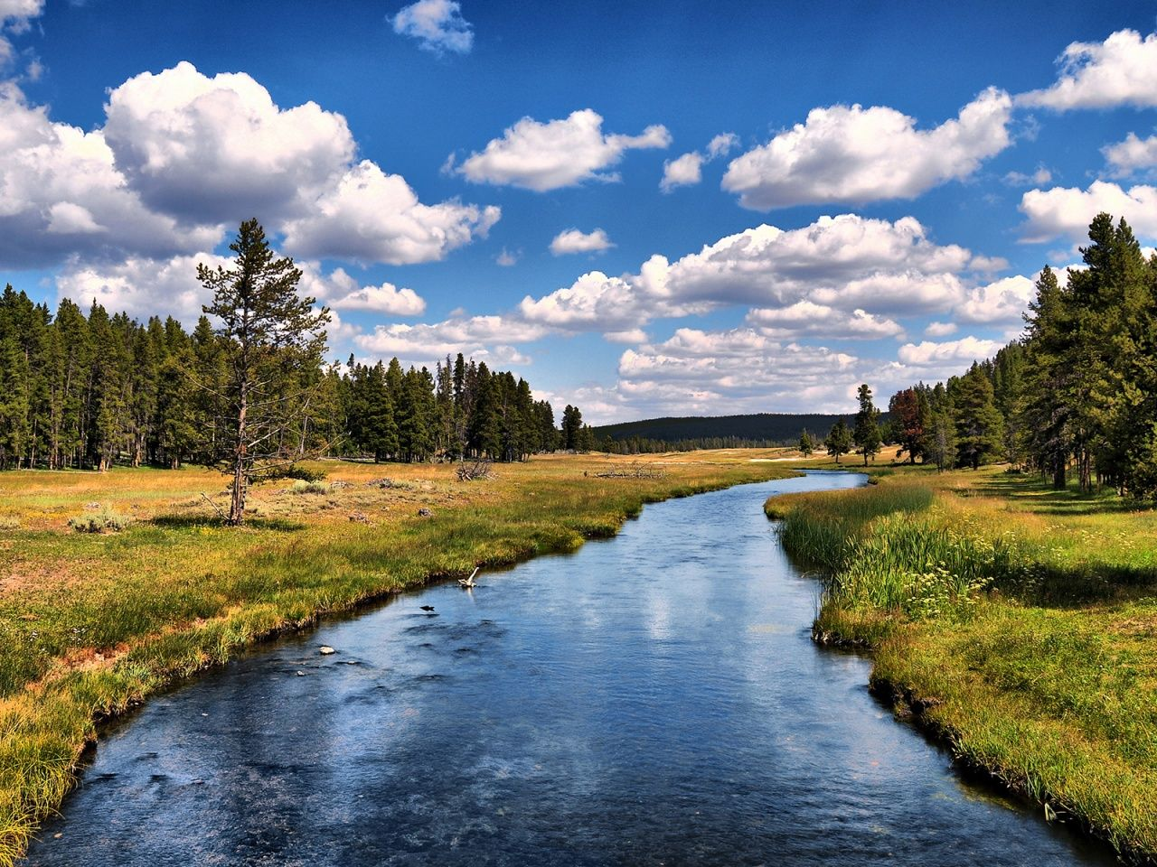 Yellowstone National Park With Images Hd Landscape Hd Nature