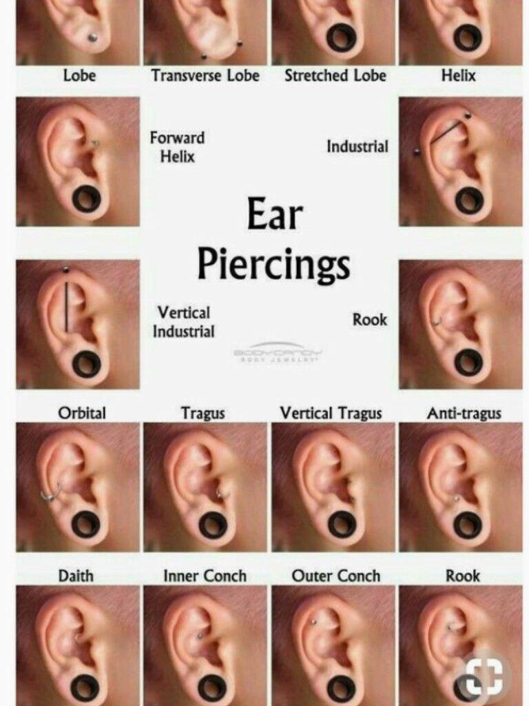 Ear lobe piercing names  That lower rook  Piercing  Pinterest  Piercing Ear piercings and