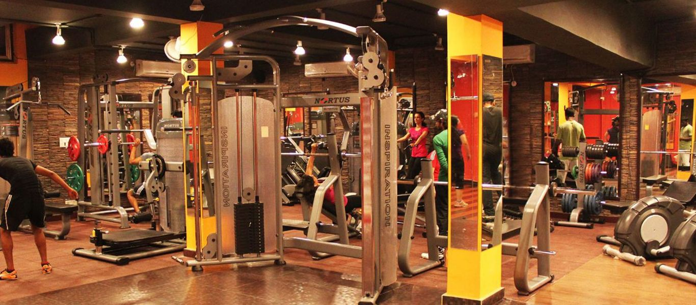 Pin By Nortus Fitness On Http Www Nortusfitness Com Commercial Gym Equipment No Equipment Workout Gym Equipment
