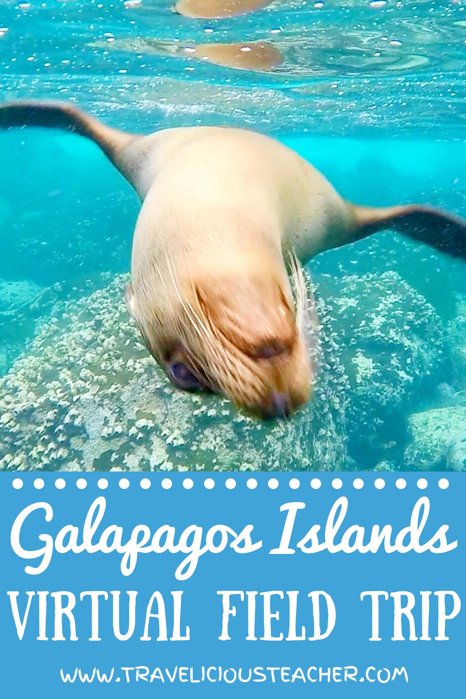 Virtual Field Trip Galapagos Islands Virtual Field Trips Field Trip Classroom Field Trip [ 2250 x 1500 Pixel ]