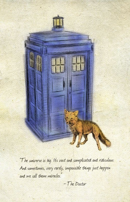Bekannt NO LONGER AVAILABLE] Doctor Who /What does the Fox say 11x17 print  SI22
