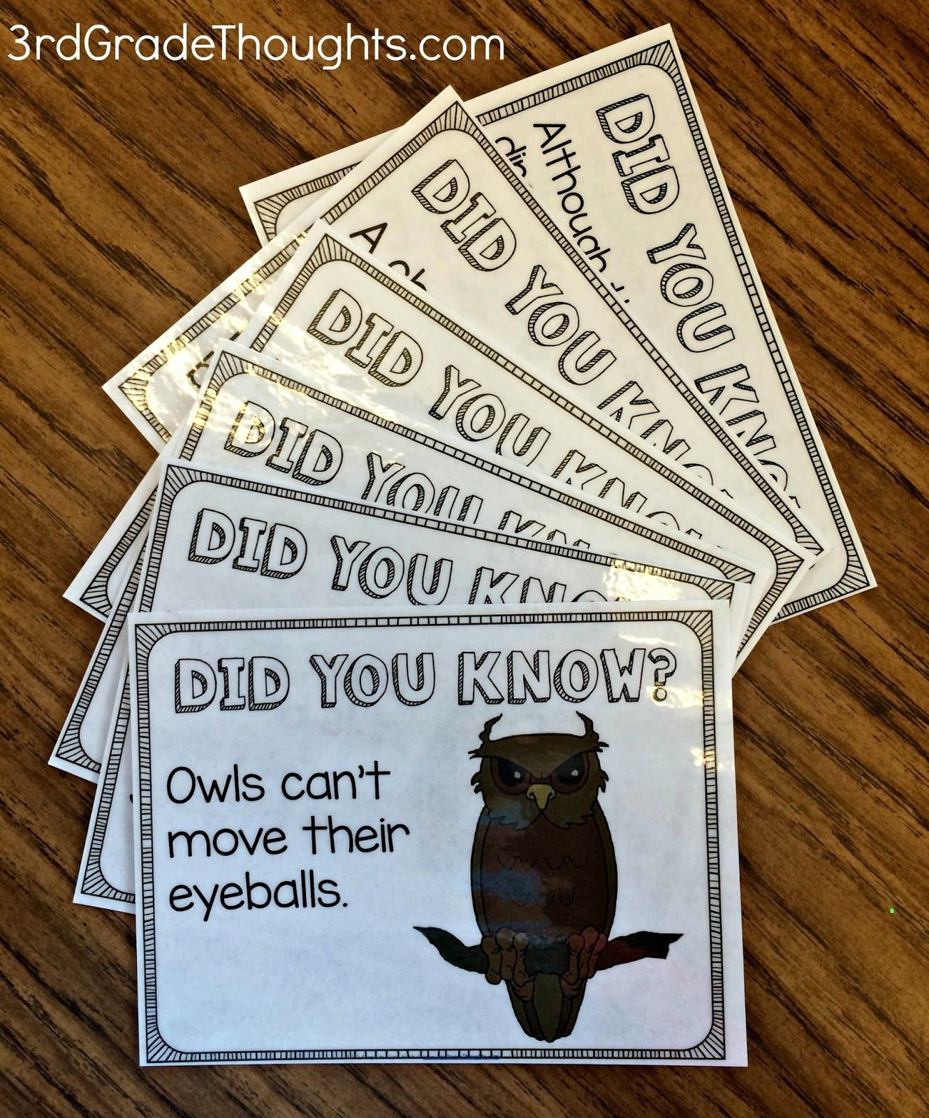 Did You Know Mini Research Project