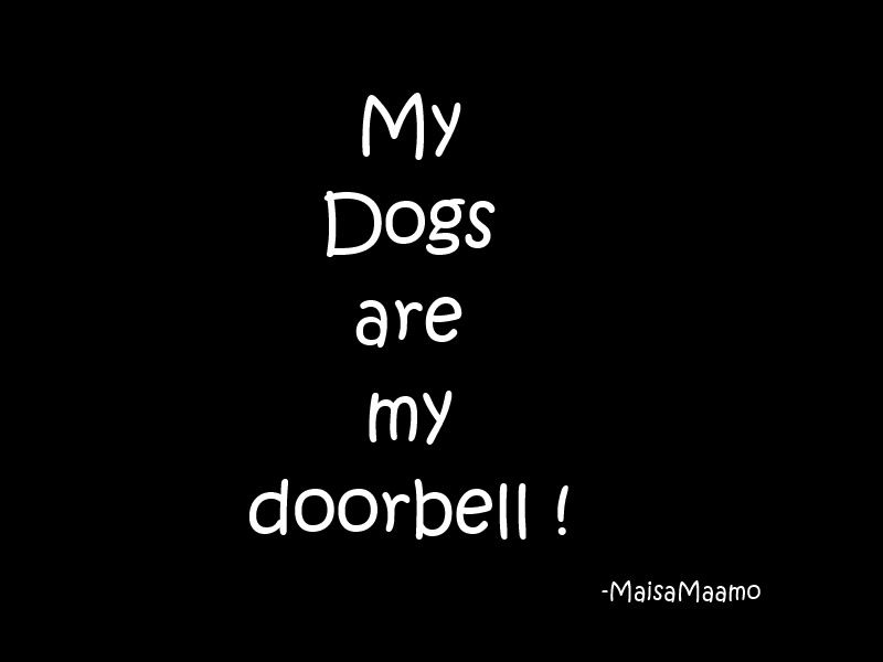 I rely on my pups way too much for this :) is this the same for you? All dog lovers will understand! http://www.youmustlovedogsdating.com