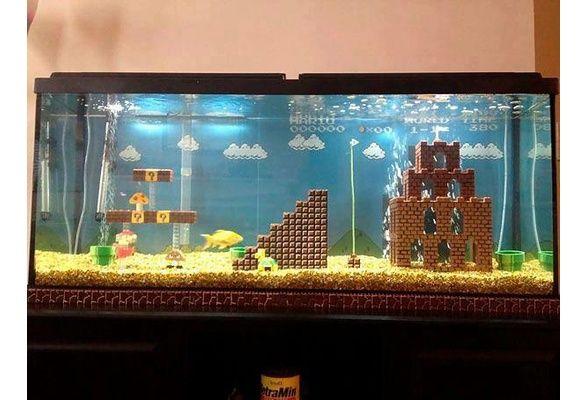 Wish | Mario Fish Tank | Fish tank, Aquarium decorations ...