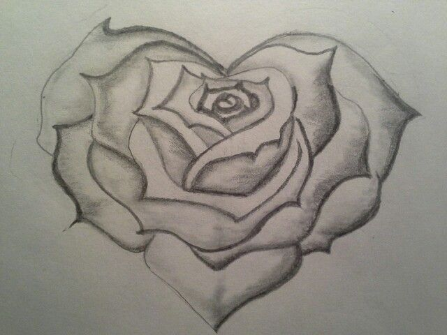 Line Drawing Heart Shape : Heart shaped rose my drawings shapes and draw
