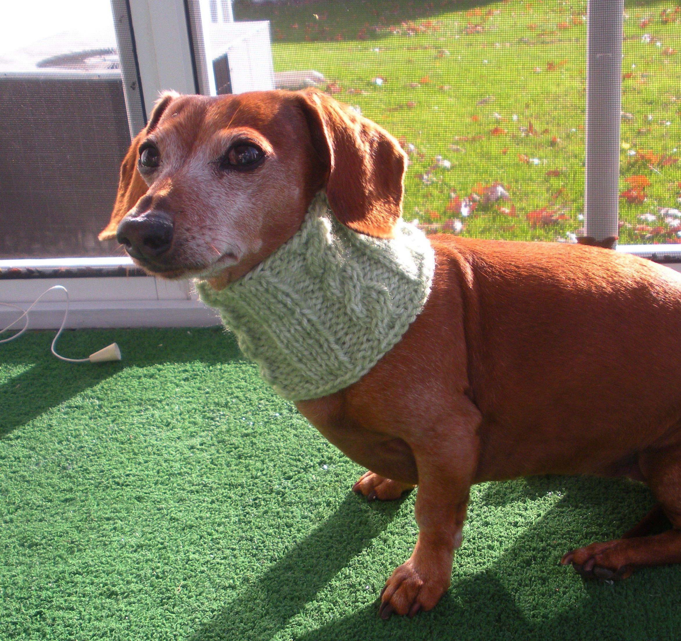 Pdf Pattern Dog Neck Warmer Cowl Cabled Pattern By Craftymjc On