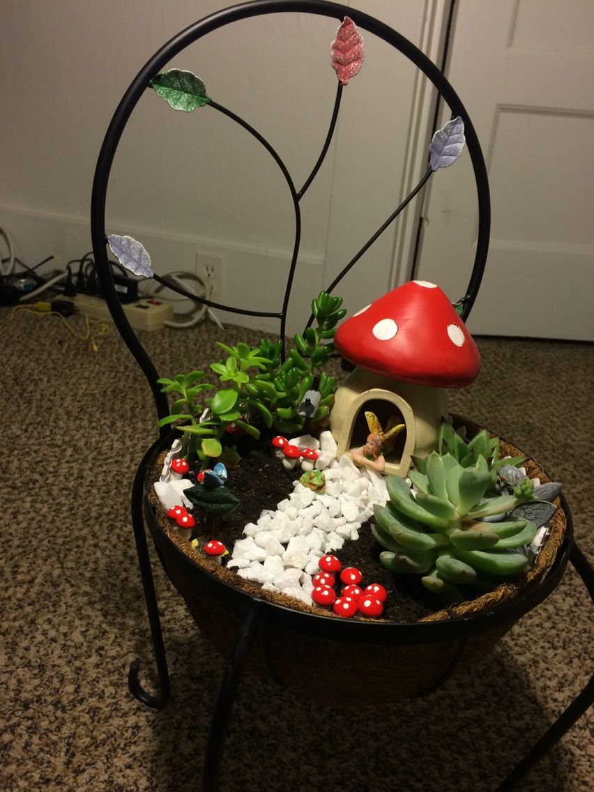 Beautiful fairy garden, super easy to make! Go down to Michaels and get some fairy accessories, and get a few succulents and create your own! It was easy and fun to make! :)